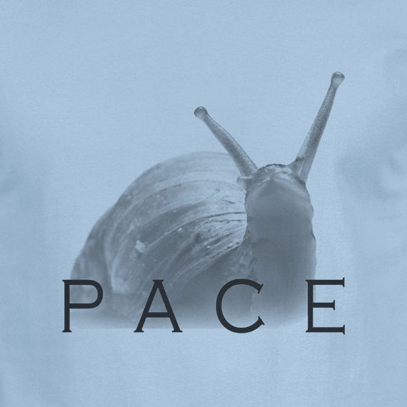 Buy Snail Pace Funny Animal Sports Graphic Tee Shirt Light Blue