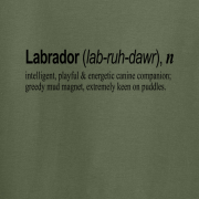 Labrador Quote Graphic Green Tee Shirt