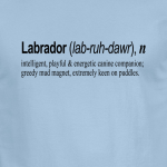 Buy Labrador Quote Graphic Blue Tee Shirt