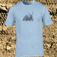 Buy Snail Pace Funny Animal Sports Graphic Light Blue Tee Shirt